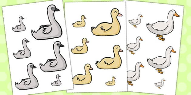 Ugly Duckling Size Ordering - size ordering, ugly duckling, size