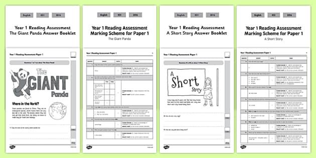 Year 1 Reading Assessment Term 2 Paper 1 - formative, summative, diagnostic, fiction, non-fiction