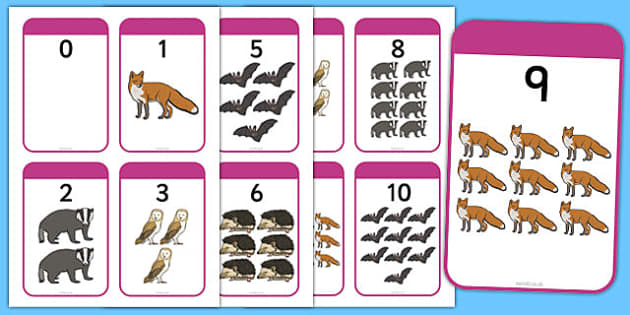 Nocturnal Animals Matching Activity Number Bonds to 10 - nocturnal, animals, matching, activity, number bonds, 10