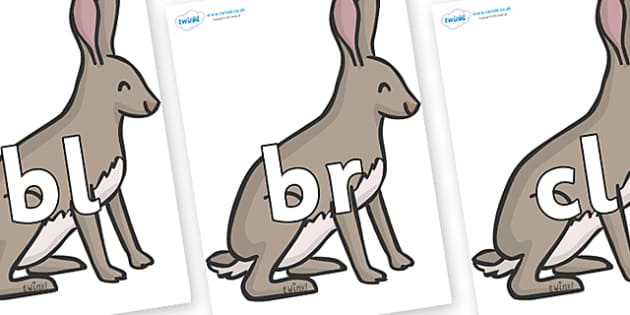 Initial Letter Blends on Hares - Initial Letters, initial letter, letter blend, letter blends, consonant, consonants, digraph, trigraph, literacy, alphabet, letters, foundation stage literacy
