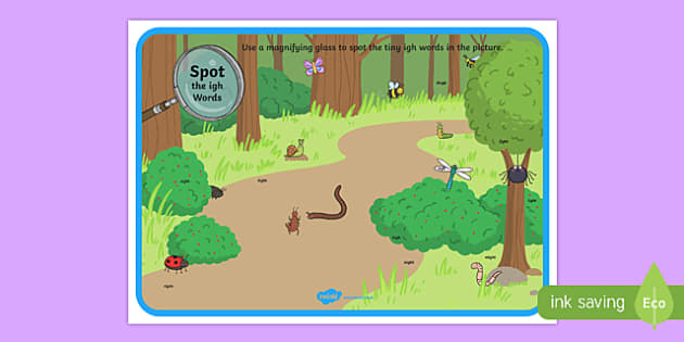 Phase 3 igh Words Minibeasts Scene Magnifying Glass Activity Sheet, worksheet