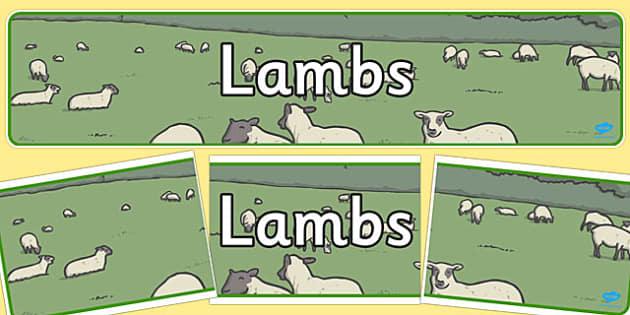 Lambs Display Banner - lambs, display banner, display, banner
