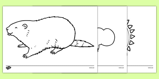 Groundhog Day Coloring Sheets - groundhog day, groundhog, tradition, celebration, coloring sheet