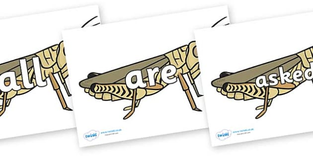 Tricky Words on Grasshoppers - Tricky words, DfES Letters and Sounds, Letters and sounds, display, words