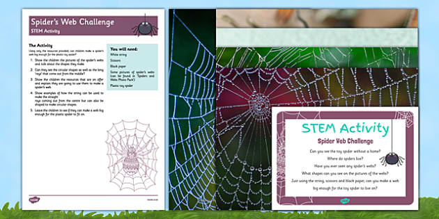 Spiders Web STEM Activity and Prompt Card Pack - EYFS, Minibeasts