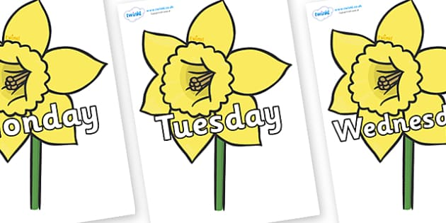 Days of the Week on Daffodils - Days of the Week, Weeks poster, week, display, poster, frieze, Days, Day, Monday, Tuesday, Wednesday, Thursday, Friday, Saturday, Sunday