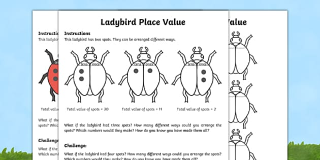 Ladybird Place Value Activity Sheet Pack, worksheet