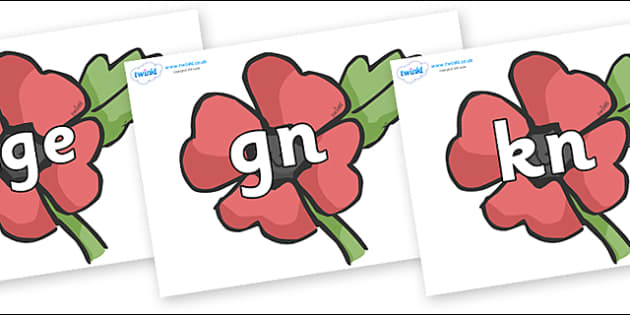 Silent Letters on Poppies - Silent Letters, silent letter, letter blend, consonant, consonants, digraph, trigraph, A-Z letters, literacy, alphabet, letters, alternative sounds