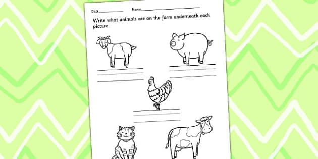 Animals on the Farm Worksheet - farm animals, animal activities