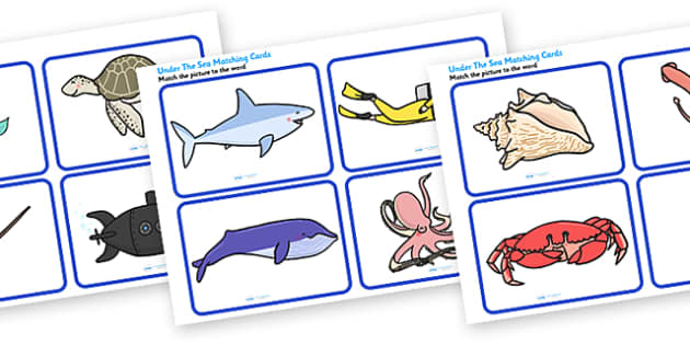 Under the Sea Matching Cards - under the sea, under the sea matching, under the sea matching activity, under the sea image and word matching cards