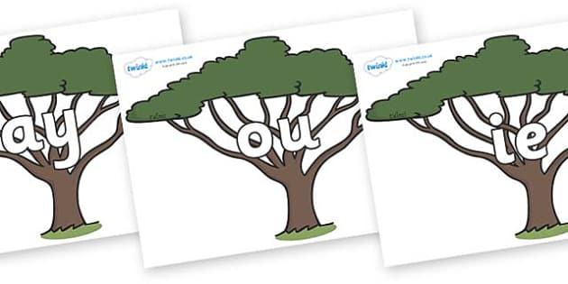Phase 5 Phonemes on Acacia Trees - Phonemes, phoneme, Phase 5, Phase five, Foundation, Literacy, Letters and Sounds, DfES, display