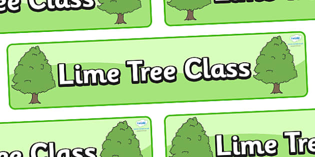 Lime Tree Themed Classroom Display Banner - Themed banner, banner, display banner, Classroom labels, Area labels, Poster, Display, Areas