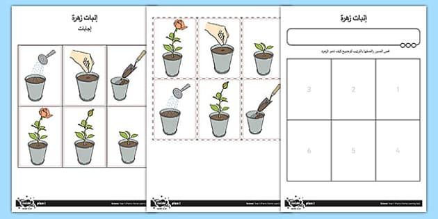 ورقة عمل إنبات زهرة - إنبات، زهرة، علوم، نبات، تشجير، أوراق عمل, worksheet