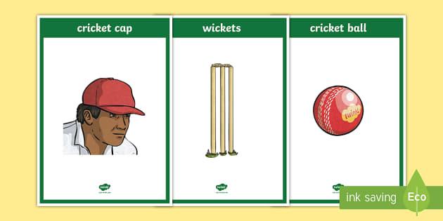 Cricket Display Posters - Cricket,Australia, batsman, batting, bowling, wicket, stumps, bails