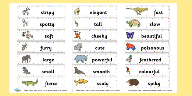 Animal Adjectives Cards - Primary Resources English, Literacy, Letters and Sounds, phonics