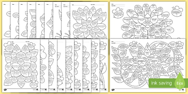 EYFS Assessment Flowers