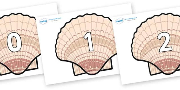 Numbers 0-50 on Seashells - 0-50, foundation stage numeracy, Number recognition, Number flashcards, counting, number frieze, Display numbers, number posters