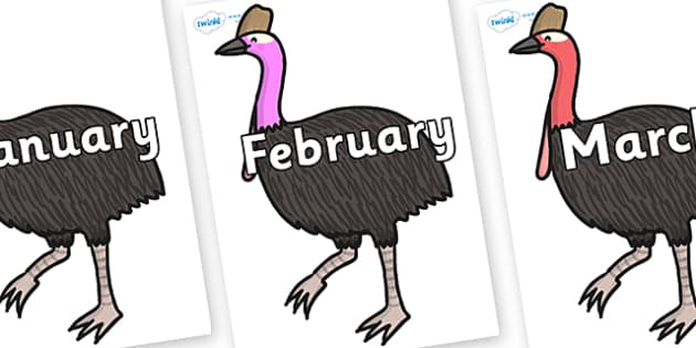Months of the Year on Cassowary - Months of the Year, Months poster, Months display, display, poster, frieze, Months, month, January, February, March, April, May, June, July, August, September