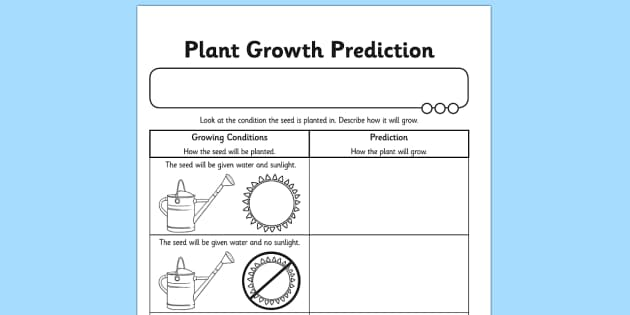 Plant Growth Prediction Worksheet plants living things plant – Prediction Worksheets
