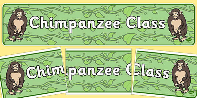 Chimpanzee Class Display Banner - chimpanzee, class, display banner