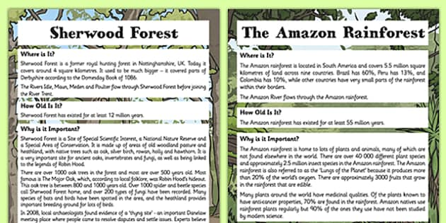 Forest Fact Sheets - forest, fact sheets, fact, sheet, geography, ks2, key stage 2, forest fact sheet