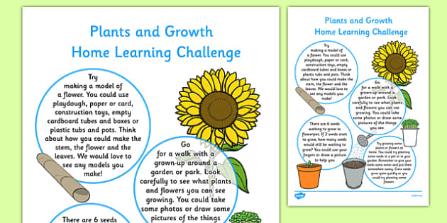EYFS Plants and Growth Home Learning Challenge Sheet Nursery FS1 - EYFS, homework, Early years, flowers, growing