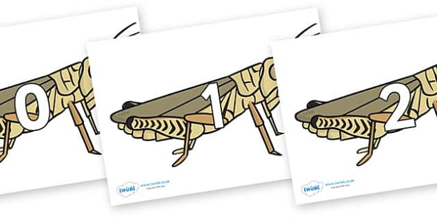 Numbers 0-31 on Grasshoppers - 0-31, foundation stage numeracy, Number recognition, Number flashcards, counting, number frieze, Display numbers, number posters