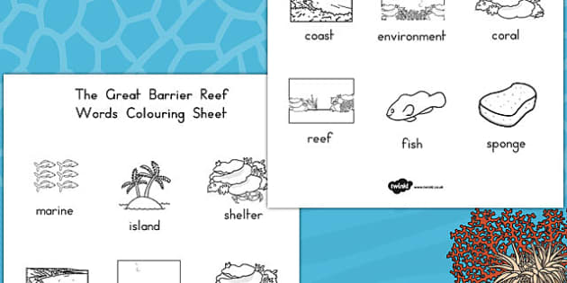 Great Barrier Reef Words Colouring Sheet - australia, colouring