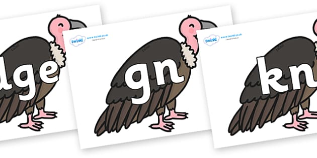 Silent Letters on Vultures - Silent Letters, silent letter, letter blend, consonant, consonants, digraph, trigraph, A-Z letters, literacy, alphabet, letters, alternative sounds