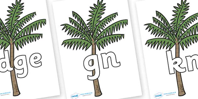 Silent Letters on Palm Trees - Silent Letters, silent letter, letter blend, consonant, consonants, digraph, trigraph, A-Z letters, literacy, alphabet, letters, alternative sounds