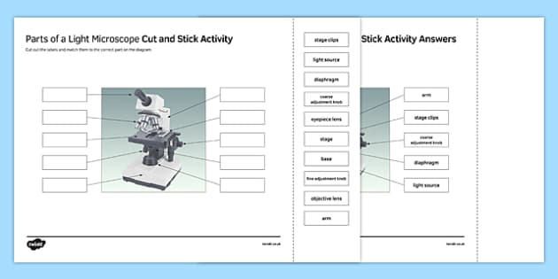 Parts of a Light Microscope Cut and Stick Activity Sheet – Parts of the Microscope Worksheet