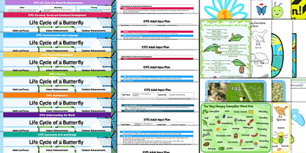 EYFS Life Cycle Butterfly Lesson Plan Enhancement Ideas Resources