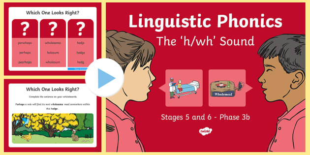 NI Linguistic Phonics Stage 5 and 6 Phase 3b, 'h, wh' Sound PowerPoint - Linguistic Phonics, Phase 3b, Northern Ireland, 'h', 'wh', sound, sound search, word sort, inv