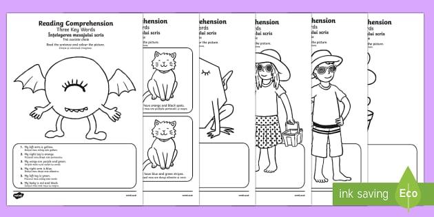 Reading Comprehension – Three Key Words Activity Sheet Pack English/Romanian
