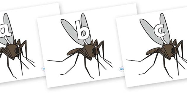 Phase 2 Phonemes on Mosquitos - Phonemes, phoneme, Phase 2, Phase two, Foundation, Literacy, Letters and Sounds, DfES, display