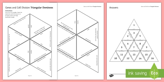 Genes and Cell Division Tarsia Triangular Dominoes - Tarsia, dominoes, biology, gcse, gene, genes, cell division, meiosis, mitosis, cells, genetics, chro