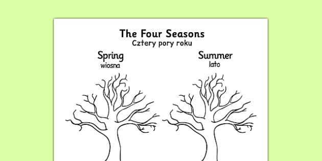 Four Seasons Tree Drawing Template Polish Translation - polish, four seasons, tree, drawing, template