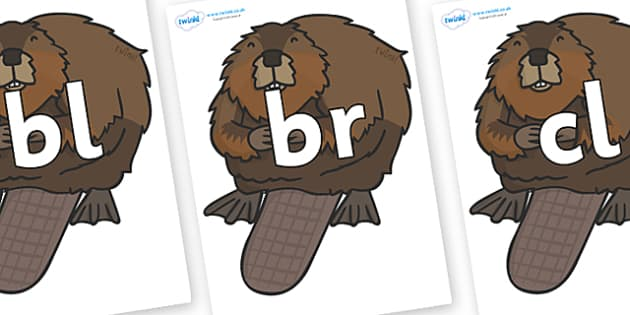 Initial Letter Blends on Beavers - Initial Letters, initial letter, letter blend, letter blends, consonant, consonants, digraph, trigraph, literacy, alphabet, letters, foundation stage literacy