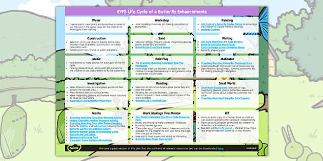EYFS Life Cycle of a Butterfly Enhancement Ideas - butterfly