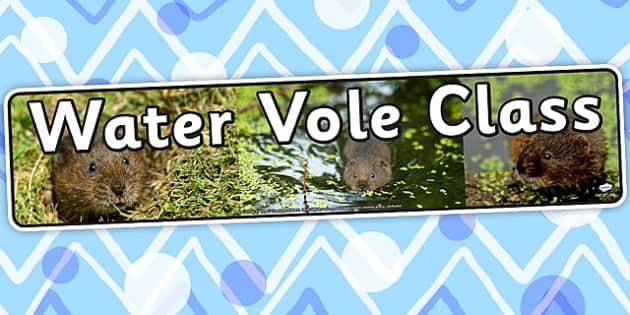 Water Vole Class Display Banner - animals, class banner, header