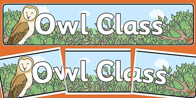 Owl Themed Classroom Display Banner - owl, display banner, class