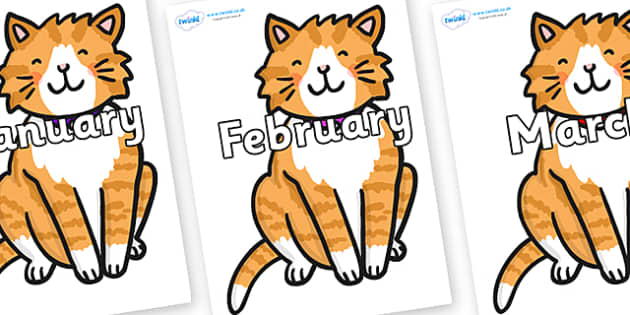 Months of the Year on Cat - Months of the Year, Months poster, Months display, display, poster, frieze, Months, month, January, February, March, April, May, June, July, August, September