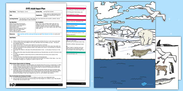 Sorting Polar Animals EYFS Adult Input Plan and Resource Pack - sorting, polar, animals, eyfs, adult input plan, pack