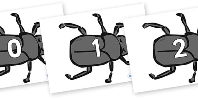 Numbers 0-50 on Beetles - 0-50, foundation stage numeracy, Number recognition, Number flashcards, counting, number frieze, Display numbers, number posters