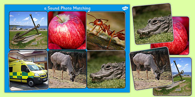 Initial a Sound Photo Matching Board and Cards - sounds, phonics