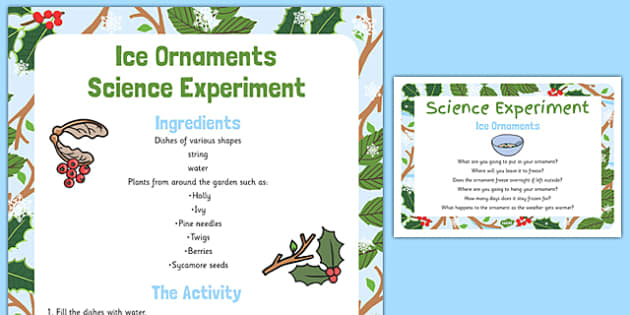 Ice Ornaments Science Experiment - ice ornaments, science, experiment
