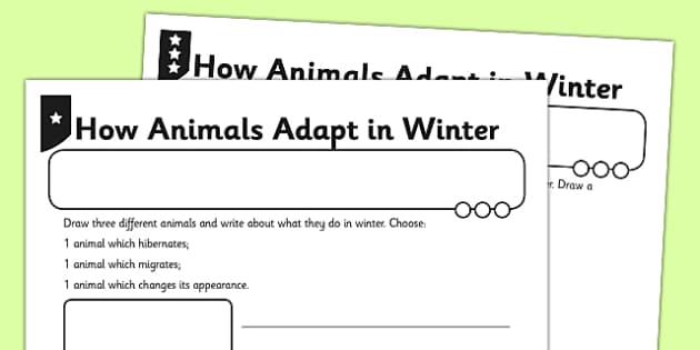 How Animals Adapt In Winter - animals in winter, animals adapting, animals, winter, adapting, science