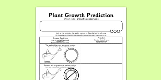 Plant Growth Prediction Worksheet Polish Translation polish – Prediction Worksheet