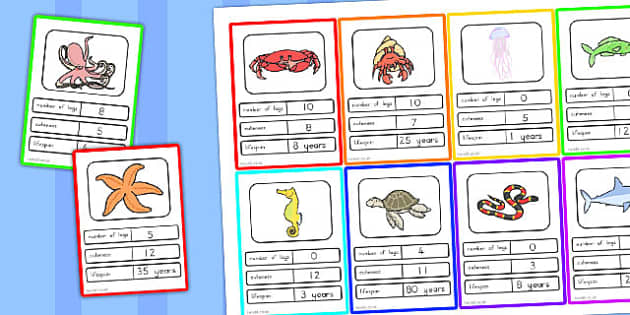 Great Barrier Reef Card Game - australia, great, barrier