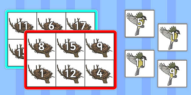 Bird Themed Number Bonds to 20 Bingo - game, maths, adding, combining, counting on, topic, numeracy, ks1, key stage 1, early years, activity, whole class, small, group